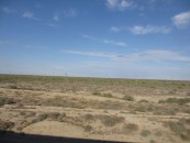 View from train to Baikonur
