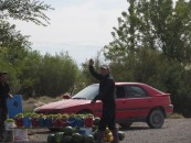 We pulled over at a roadside vendors to buy some local grapes. Like in Kyrgyzstan, there seem to be many small vendors selling exactly the same things in a row, which appears a bit inefficient.