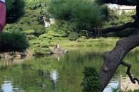 Kiyosumi Gardens 2 DSC_0339 (Medium)