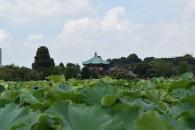 Oeno Park DSC_0294 (Medium)