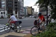The safe way to cross the street DSC_0305 (Medium)